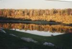 Trout Pond 2